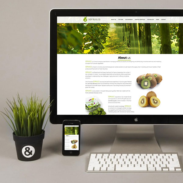 Création blog Dax