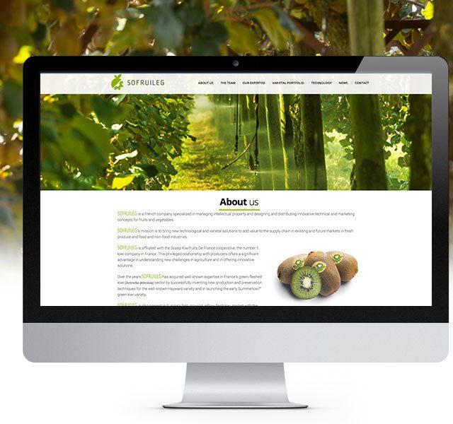 Agence Web Dax